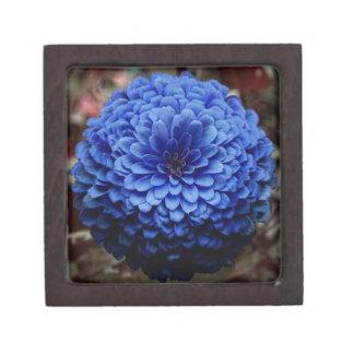 Cierre azul de la flor encima de la foto cajas de recuerdo de calidad