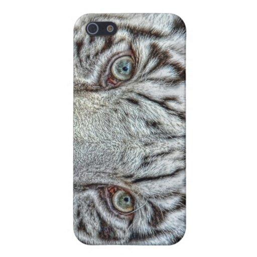 Cierre blanco del tigre encima de 4 Shell iPhone 5 Fundas