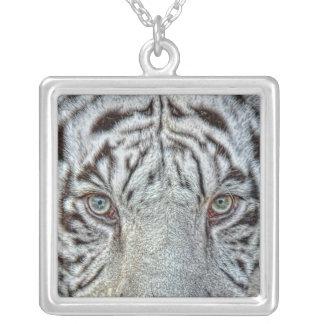 Cierre blanco del tigre encima del collar