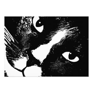 Cierre blanco y negro de la cara del gato para arr comunicado personal