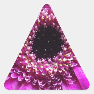 Cierre coloreado de la flor para arriba pegatina triangular