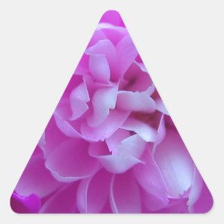 Cierre coloreado del diseño floral para arriba pegatina triangular