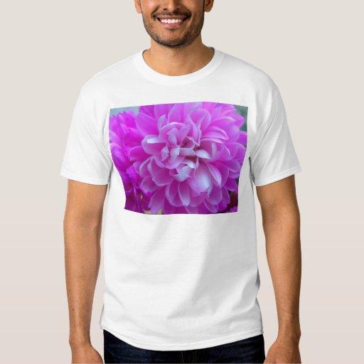 Cierre coloreado del diseño floral para arriba remeras