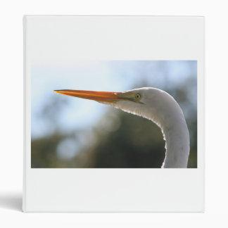 cierre de la cabeza del egret encima de la fotogra