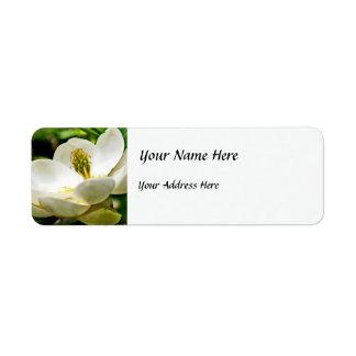 Cierre de la flor de la magnolia para arriba etiqueta de remite