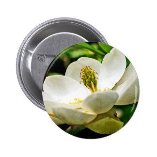 Cierre de la flor de la magnolia para arriba pin redondo de 2 pulgadas