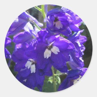 Cierre de la flor del Delphinium Pegatina Redonda