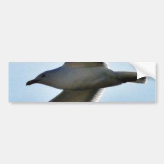 Cierre de la gaviota del vuelo para arriba pegatina de parachoque