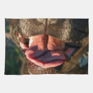 cierre de la lengua del rosa de la nariz de perro toallas de mano