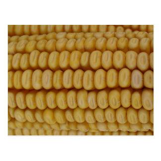 Cierre de la mazorca de maíz para arriba postal