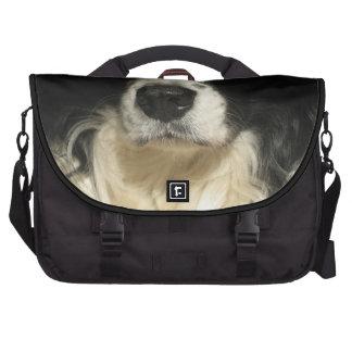 Cierre de la nariz de perro encima del bolso del bolsa para ordenador