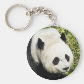 Cierre de la panda gigante encima del retrato llavero redondo tipo pin