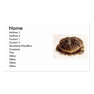 Cierre de la rana del sapo encima de la fotografía tarjetas de visita