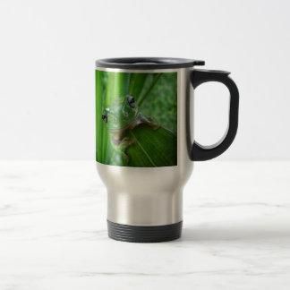 Cierre de mirada lindo de la rana arbórea para taza térmica
