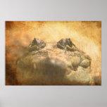 Cierre de Moreletii del Crocodylus para arriba Poster