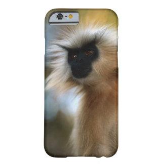 Cierre de oro del langur (geei de Prebytis) para Funda Barely There iPhone 6