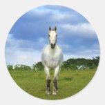 Cierre del caballo blanco para arriba pegatina redonda