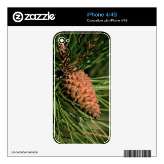 Cierre del cono del pino para arriba llamo por tel iPhone 4S calcomanía