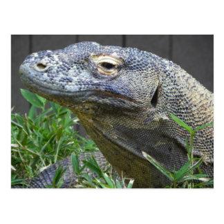 Cierre del dragón de Komodo para arriba Tarjetas Postales