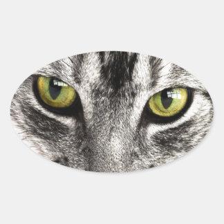 cierre del gato de tabby tabby-114782 encima del calcomania de óval