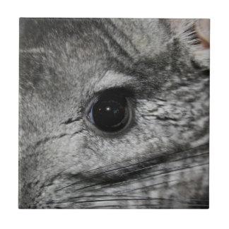 cierre del ojo de la chinchilla para arriba azulejo cuadrado pequeño
