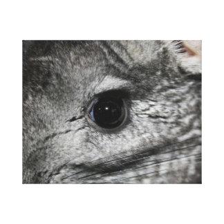 cierre del ojo de la chinchilla para arriba impresiones en lona estiradas