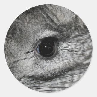 cierre del ojo de la chinchilla para arriba etiquetas redondas