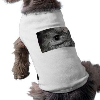 cierre del ojo de la chinchilla para arriba camisetas mascota