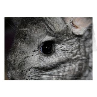 cierre del ojo de la chinchilla para arriba tarjeta pequeña