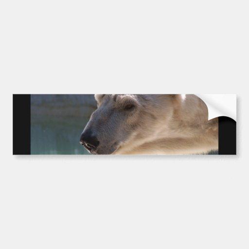 Cierre del oso polar encima del retrato pegatina para auto