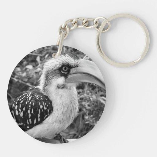 Cierre del pájaro del Hornbill para arriba que Llavero Redondo Acrílico A Doble Cara