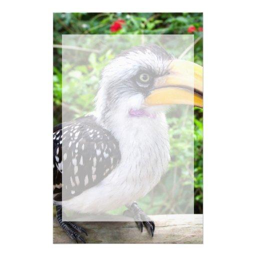 Cierre del pájaro del Hornbill para arriba que mir Papelería De Diseño