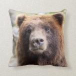 Cierre del retrato del oso grizzly para arriba