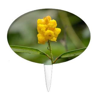 cierre dirigido multi de la flor amarilla para arr figura de tarta