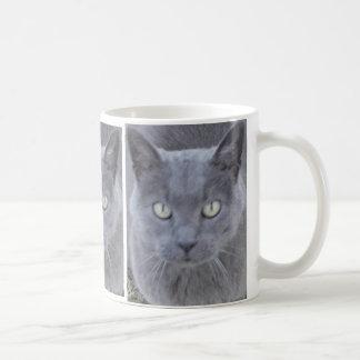 Cierre gris de la cara del gato encima de la taza