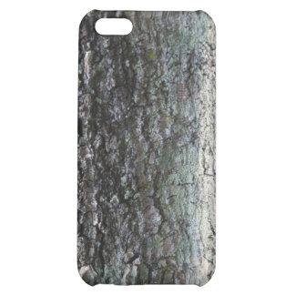 Cierre gris de la corteza de árbol para arriba que