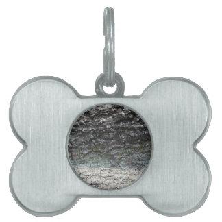 Cierre gris de la corteza de árbol para arriba que placas mascota