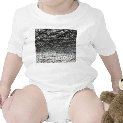Cierre gris de la corteza de árbol para arriba que trajes de bebé