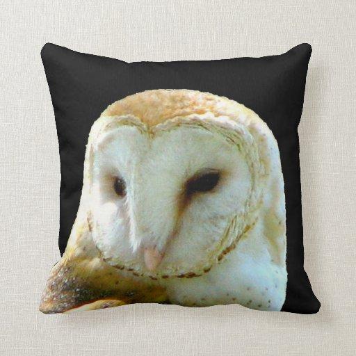 Cierre hermoso de la lechuza común para arriba almohada
