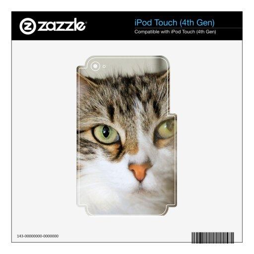 Cierre mullido del gato para arriba calcomanías para iPod touch 4G