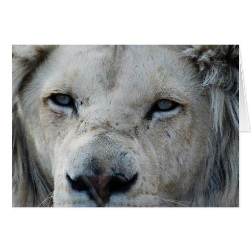 Cierre real del león para arriba tarjeta de felicitación