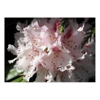 Cierre rosado 2 del pétalo de la flor del rododend tarjetas de visita