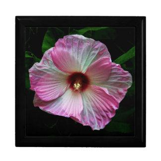 Cierre rosado de la flor encima de la foto caja de joyas