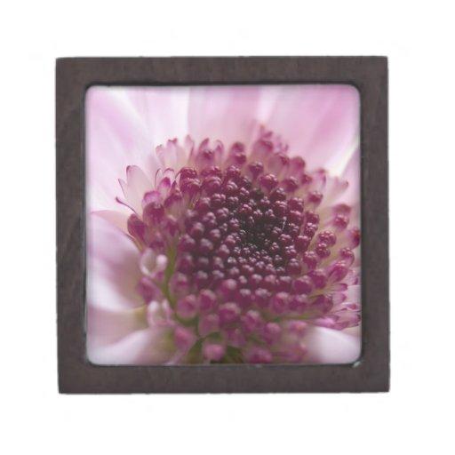 Cierre rosado de la flor para arriba cajas de joyas de calidad