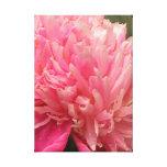 Cierre rosado de la flor para arriba impresión en lona