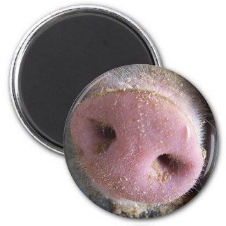 Cierre rosado de la nariz del cerdo encima de la f imán redondo 5 cm