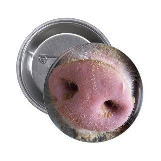 Cierre rosado de la nariz del cerdo encima de la f pins