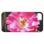 Cierre rosado del rosa para arriba iPhone 5 Case-Mate carcasas