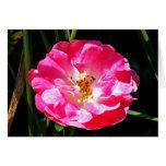 Cierre rosado del rosa para arriba tarjeta pequeña