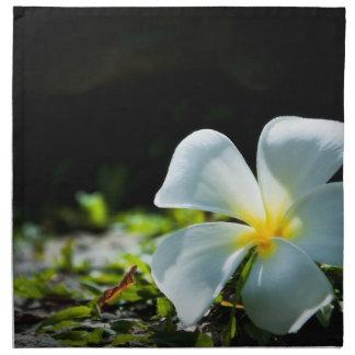 Cierre tropical blanco de la flor (frangipani) enc servilleta imprimida